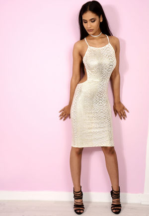 Sophie Snake Skin Backless Bodycon